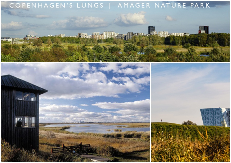 CPH_AMAGER_00